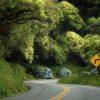Estrada-da-Graciosa