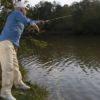 pescar-fausto